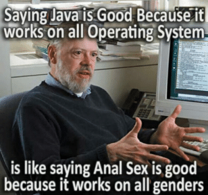 Well Logic has its own perks: Saying Java is. Good Because 1t  works on all Operating System  is like saying Anal Sex is good  because it works on all genders Well Logic has its own perks
