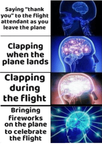 """Thank You, Fireworks, and Flight: Saying """"thank  you"""" to the flight  attendant as you  leave the plane  Clapping  when the  plane lands  Clapping  during  the flighb  Bringing  fireworks  on the plane  to celebrate  the flight How to celebrate the flight"""