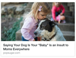 "Children, Clock, and Fake: Saying Your Dog ls Your ""Baby"" Is an Insult to  Moms Everywhere  popsugar.com blvckdynamite: trebled-negrita-princess:  onyxslaughterhaus:  loptrcoptr:  kurtwagnermorelikekurtwagnerd:  bradmajors:  thefingerfuckingfemalefury:  josswhedons-twittermantrum:  thefingerfuckingfemalefury:  ohgodhesloose:  thefingerfuckingfemalefury:  cakelikeowen:  zooophagous:  masterkittens:  Saying you child is your ""kid"" is an insult to goats everywhere.  I'll insult moms everywhere. Fight me Pam.  Fuck you, Barbara   You want to do this now, Helen?   Oh it is on Brenda  Eight o clock after the PTA meeting, Joan  Uhm, my kids will be going to bed at 8, Sandy, because unlike SOME mothers I put my children to bed at a responsible time!  Don't you bring my kids into this, Janet  You're right Sandy, we shouldn't bring your C- average kids into this. We should, however, bring your 2013 Honda Odyssey that reeks of failure and cigarettes from your midnight affairs with the mail man.  At least I have a man touching me, unlike SOMEONE I know. When was the last time Frank so much as looked at you, Jackie?  C-Carol, you've gone t-t-too far!  NONE OF YOU ARE INVITED TO THE CASSEROLE POTLUCK! That includes you,  Cynthia…       God this is magical"