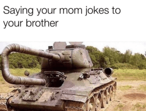 your mom jokes: Saying your mom jokes to  your brother