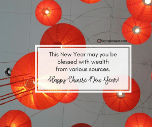Happy Chinese New Year Quotes, Wishes, Images, Greetings & Cards #sayingimages #happychinesenewyear #chinesenewyear #chinesenewyearquotes #chinesenewyearwishes #chinesenewyeargreetings #chinesenewyearcards: SayingImages.com  This New Year may you be  blessed with wealth  from various sources. Happy Chinese New Year Quotes, Wishes, Images, Greetings & Cards #sayingimages #happychinesenewyear #chinesenewyear #chinesenewyearquotes #chinesenewyearwishes #chinesenewyeargreetings #chinesenewyearcards