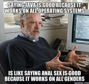 Anal, Good, and Java: SAYINGJAVA ISGOOD BECAUSE IT  WORKS ON ALL OPERATING SYSTEMS  IS LIKE SAYING ANAL SEXIS GOOD  BECAUSE IT WORKS ON ALL GENDERS  MEMEFUL.COM Java is better than C because