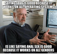 Anal Sex, Sex, and Anal: SAYINGJAVAISGOOD BECAUSEIT  WORKS ON ALLOPERATING SYSTEMS  IS LIKE SAYING ANAL SEX IS GOOD  BECAUSE IT WORKS ON ALL GENDERS  MEMEFULCOM Java my bois
