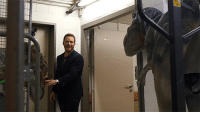 Chris Pratt, Fucking, and Love: sbdrag:  yahooentertainment:  Chris Pratt got pranked by dinosaurs in Poland  what i love is he looks so happy about it too likeaw man that was awesome, you guys really got me, i just got pranked by fucking dionsaurs fuck yeah