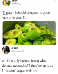 Arguing, Memes, and Nasty: Sboh  @Sboh  Thought I should bring some good  luck onto your TL  @will ent  SIRUS  @umcornell  am i the only human being who  detests avocados?? they're nasty as  f k.don't argue with me True or not?🥑