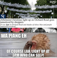 So bright how to see...: SCAG  Afternoon Christmas light-up on Orchard Road goes  unnoticed by shoppers  It was 3pm in Orchard Road and shades of silver, blue and purple  appeared overhead  WA PIANG EH  OF COURSE LAH, LIGHT UP AT  3PM WHO CAN SEEP So bright how to see...