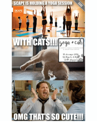 "Driving, Memes, and Namaste: ""SCAPE IS HOLDING A YOGA SESSION  SCAPE  dream it live it.  WITH CATS!!!  yoga cas  CHARITY YOGA FUNDRAISER  6 ADOPTION DRIVE  10 december 2016  12.30p te 2.30pHS  Scut Space  OMG THATS SO CUTE!!! OMG SIGN ME UP FOR THIS!!!! (Click link in bio to sign up) Btw, *SCAPE also has other workshops like Leather Christmas Ornament and Silkscreen Postcards happening this Friday & Saturday too – first 100 people to quote the codeword 'Namaste Puss!' at the event will get to go completely FREE! sp"