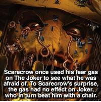 Joker, Memes, and Poop: Scarecrow once used his fear gas  on The Joker to see what he was  afraid of. To Scarecrow's surprise,  the gas had no effect on Joker,  who in turn beat him with a chair. I would poop myself if I saw the Joker 😳🃏