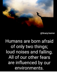 🤔🤔🤔: @Scary horror  Humans are born afraid  of only two things  loud noises and falling  All of our other fears  are influenced by our  environments. 🤔🤔🤔