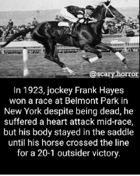 He died a winner: @scary horror  @scary.horr  In 1923, jockey Frank Hayes  won a race at Belmont Park in  New York despite being dead, he  suffered a heart attack mid-race,  but his body stayed in the saddle  until his horse crossed the line  for a 20-1 outsider victory. He died a winner
