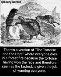 """Af, Fire, and Memes: @Scary horror  There's a version of """"The Tortoise  and the Hare"""" where everyone dies  in a forest fire because the tortoise,  having won the race and therefore  seen as the fastest, is given the job  of warning everyone. Tortoise: """"I'm fast af boiii"""""""