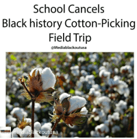 School Cancels Black History Cotton Picking Field Trip Ablackoutusa