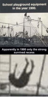 Apparently, Memes, and Recess: School playground equipment  in the year 1900.  Apparently in 1900 only the strong  Survived recess Back then it was Hit or Miss via /r/memes http://bit.ly/2BD21eu