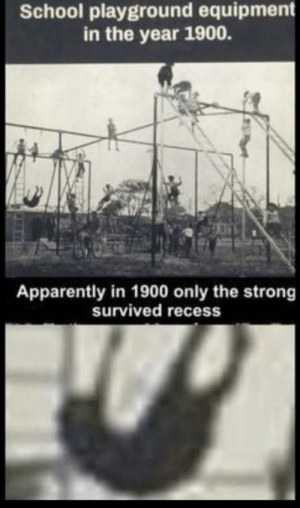 forever-memes:  Survival of the fittest: School playground equipment  in the year 1900.  Apparently in 1900 only the strong  survived recess forever-memes:  Survival of the fittest