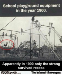 scavenger: School playground equipment  in the year 1900.  Apparently in 1900 only the strong  survived recess  The  Intermet Scavengers  .com