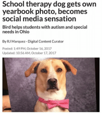 Fresh, Funny, and News: School therapy dog gets own  yearbook photo, becomes  social media sensation  Bird helps students with autism and special  needs in Ohio  By RJ Marquez Digital Content Curator  Posted: 1:49 PM, October 16, 2017  Updated: 10:56 AM, October 17,2017 @tanksgoodnews is like a breath of fresh air in all this negativity. It's good news only.