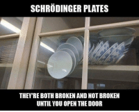 Open, You, and Door: SCHRODINGER PLATES  THEY'RE BOTH BROKEN AND NOT BROKEN  UNTIL YOU OPEN THE DOOR
