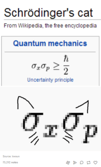 Memes, Wikipedia, and Mechanic: Schrodinger's cat  From Wikipedia, the free encyclopedia  Quantum mechanics  oron  Uncertainty principle  Source: lowsun  73.212 notes