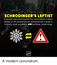 Death, Violent, and Thought: SCHRODINGER'S LEFTIST  A thought experiment invented by conservatives in which  people on the political left are simultaneously a group of  cowardly, weak snowflakes AND terrifying, violent thugs.  CAFE  A modern conundrum So which is it? Soy boy snowflakes or ultra violent radicals inflicting death and destruction?