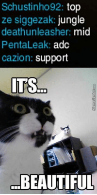 Memes, 🤖, and Leaks: Schustinho92: top  ze siggezak: jungle  deathunleasher: mid  Penta Leak  adc  cazion: support  ITS  BEAUTIFUL Teamwork on an online game?? Ridiculous!