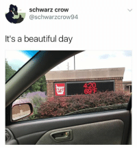 Beautiful, Memes, and 4 20: schwarz crow  @schwarzcrow94  It's a beautiful day  4:20  699F  te Yes it is
