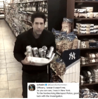 Memes, New York, and Omg: schwim @DavidSchwimmer-  Officers, I swear it wasn't me  As you can see, I was in New York  To the hardworking Blackpool Police, good  luck with the investigation Post 1419: OMG SEE MY PREVIOUS POST IM SCREAMING I TAKE MY PREVIOUS CAPTION BACK YOU ARENT A JERK ROSS