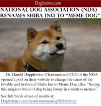 """I thought I was the only one who felt this way @uncoolschool. 2017 is looking bright everyone: Science Com  NATIONAL DOG ASSOCIATION (NDA)  RENAMES SHIBA INU TO """"MEME DOG""""  Dr. Harold Bopplewise, Chairman and CEO of the NDA  opened a poll on their website to change the name of the  lovable and hysterical Shiba Inu to Meme Dog after, """"Seeing  this magical breed of dog being funny in countless memes.  See full break down of results at  DogScience.com/results/memedog/NDA.html I thought I was the only one who felt this way @uncoolschool. 2017 is looking bright everyone"""