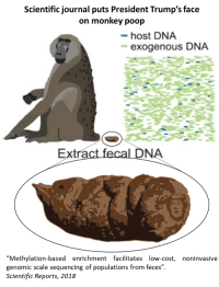 """pictures of poop: Scientific journal puts President Trump's face  on monkey poop  host DNA  exogenous DNA  NA  """"Methylation-based enrichment facilitates low-cost,  genomic scale sequencing of populations from feces""""  Scientific Reports, 2018  noninvasive"""