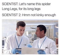 Spider, Irl, and Me IRL: SCIENTIST: Let's name this spider  Long Legs, for its long legs  SCIENTIST 2: Hmm not kinky enough Me IRL