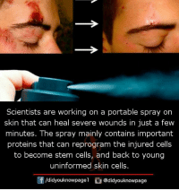 Memes, Stem, and Back: Scientists are working on a portable spray on  skin that can heal severe wounds in just a few  minutes. The spray mainly contains important  proteins that can reprogram the injured cells  to become stem cells, and back to young  uninformed skin cells.  /didyouknowpagel@didyouknowpage