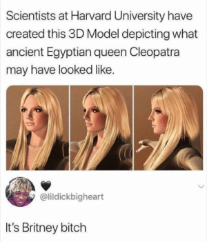 Scientists at Harvard University Have Created This 3D Model