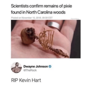 Poor Kevin Hart by Tib3t MORE MEMES: Scientists confirm remains of pixie  found in North Carolina woods  Posted on November 15, 2018, 09:59 EST  Dwayne Johnson  @TheRock  RIP Kevin Hart Poor Kevin Hart by Tib3t MORE MEMES