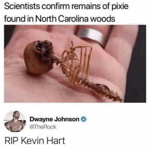 RIP: Scientists confirm remains of pixie  found in North Carolina woods  Dwayne Johnson O  @TheRock  RIP Kevin Hart RIP
