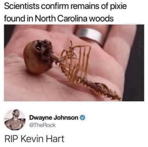 A pixie's Hart: Scientists confirm remains of pixie  found in North Carolina woods  Dwayne Johnson  @TheRock  RIP Kevin Hart A pixie's Hart