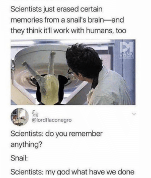 Dank, God, and Memes: Scientists just erased certain  memories from a snail's brain-and  they think it'll work with humans,  DANK  AMECCSY  @lordflaconegro  Scientists: do you remember  anything?  Snail:  Scientists: my god what have we done A huge leap by MrinalStormblessed MORE MEMES