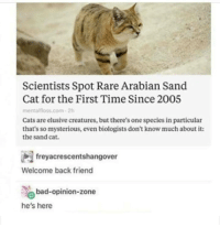 Memes, 🤖, and Creature: Scientists Spot Rare Arabian Sand  Cat for the First Time Since 2005  mental floss com .2h  Cats are elusive creatures, but there's one species in particular  that's so mysterious, even biologists don't know much about it:  the sand cat.  freyacrescentshangover  Welcome back friend  bad-opinion-zone  he's here So fluff