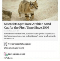 Bad, Cats, and Dude: Scientists Spot Rare Arabian Sand  Cat for the First Time Since 2005  mentalfloss.com 2h  Cats are elusive creatures, but there's one species in particular  that's so mysterious, even biologists don't know much about it:  the sand cat.  freyacrescentshangover  Welcome back friend  bad-opinion-zone  he's here the escape room dude is very attractive also i'm about to go in i'll tell you how we did when we get outtttt