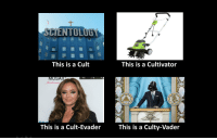 This is a Cult: SCIENTOLUG  This is a Cult  This is a Cultivator  MOSA  ewent  This is a Cult-EvaderThis is a Culty-Vader This is a Cult