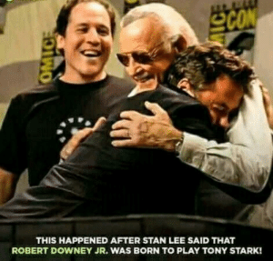 Let's view this picture as a celebration of their memory.: SCON  THIS HAPPENED AFTER STAN LEE SAID THAT  ROBERT DOWNEY JR. WAS BORN TOo PLAY TONY STARK!  OMIC Let's view this picture as a celebration of their memory.