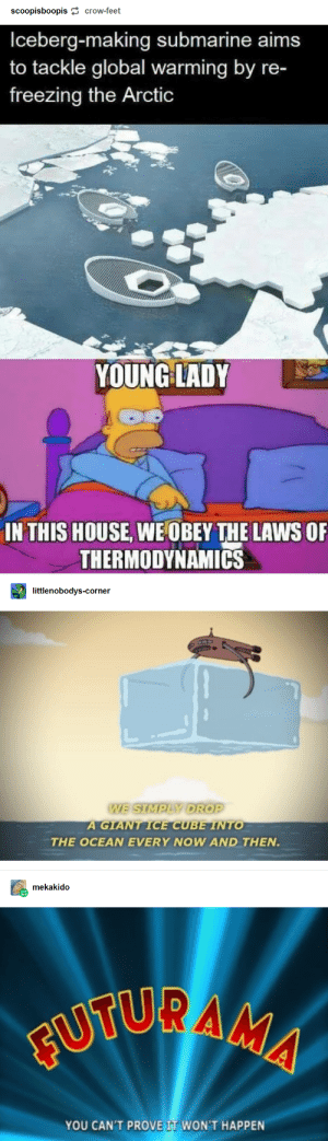 23+ Tumblr Posts That Are Too Funny To Handle #funny #funnymemes #memes #lol #rofl #trending #viral #tumblr: scoopisboopis crow-feet  Iceberg-making submarine aims  to tackle global warming by re-  freezing the Arctic  YOUNG LADY  IN THIS HOUSE, WE OBEY THE LAWS OF  THERMODYNAMIcs  littlenobodys-corner  WE SIMPLY DROP  A GIANT ICE CUBE INTO  THE OCEAN EVERY NOW AND THEN.  mekakido  FUTUR AMA  YOU CAN'T PROVE IT WON'T HAPPEN 23+ Tumblr Posts That Are Too Funny To Handle #funny #funnymemes #memes #lol #rofl #trending #viral #tumblr