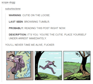 Tumblr has it's momentsomg-humor.tumblr.com: scope-dogg:  suburbsclone:  WARNING: CUTIE ON THE LOOSE.  LAST SEEN: BROWSING TUMBLR.  PROBABLY: READING THIS POST RIGHT NOW.  DESCRIPTION: IT'S YOU. YOU'RE THE CUTIE. PLACE YOURSELF  UNDER ARREST IMMEDIATELY.  YOU'LL NEVER TAKE ME ALIVE, FUCKER Tumblr has it's momentsomg-humor.tumblr.com