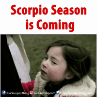 The best season is coming... 🦂: Scorpio Season  is Coming  ItsaScorpioThing O zodiacthingcomhttps://zodiacthing.com The best season is coming... 🦂