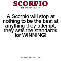 Feb 16, 2017. After stressing at work, at home you can expect real relaxation and enjoyment next to your loved one. You are very lucky because you have your own haven in your  ....... ...FOR FULL HOROSCOPE VISIT: http://horoscope-daily-free.net: SCORPIO  ZODIAC BRAIN. COM  A Scorpio will stop at  nothing to be the best at  anything they attempt  they sets the standards  for WINNING!  ZODIAC BRAIN. COM Feb 16, 2017. After stressing at work, at home you can expect real relaxation and enjoyment next to your loved one. You are very lucky because you have your own haven in your  ....... ...FOR FULL HOROSCOPE VISIT: http://horoscope-daily-free.net