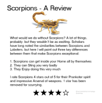 Arsenal, Dank, and Home: Scorpions A Review  What would we do without Scorpions? A lot of things.  probably, but they wouldn't be as exciting. Scholars  have long noted the similarities between Scorpions and  Lobsters, but here I will point out three key differences  between them that make Scorpions exceptional:  1. Scorpions can get inside your Home all by themselves  2. They can Sting you very badly  3. They Enjoy doing this very much  I rate Scorpions 4 stars out of 5 for their Prankster spirit  and impressive Arsenal of weapons. 1 star has been  removed for scurrying  @welcometomymemepage  @wtmmp