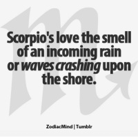 Head, Love, and Smell: Scorpio's love the smell  ofan incoming rain  or waves aashingupon  the shore.  ZodiacMind Tumblr Jan 11, 2017. You are very experienced in business, and you can make important decisions with a cool head. It is possible that many envy you on your status and position, but you don't  . ...FOR FULL HOROSCOPE VISIT: http://horoscope-daily-free.net/scorpio