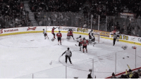 Animals, Children, and Christmas: Scotiabank A <p><span>Hockey fans celebrate opening goal by throwing stuffed animals onto ice to be donated to children for Christmas</span></p>