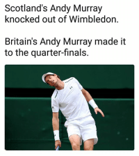 Finals, Memes, and Andy Murray: Scotland's Andy Murray  knocked out of Wimbledon  Britain's Andy Murray made it  to the quarter-finals. 🎾
