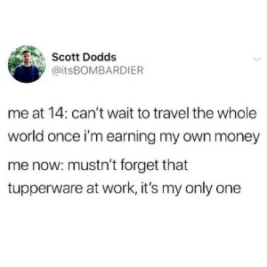 Money, Work, and Travel: Scott Dodds  @itsBOMBARDIER  me at 14: can't wait to travel the whole  world once i'm earning my own money  me now: mustn't forget that  tupperware at work, it's my only one Only one