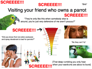 "Visiting your friend who owns a parrot starterpack: SCREEEE!!!  SCREEEE!!!  ""Birb""  Visiting your friend who owns a parrot  SCREEEE!!!  ""They're only like this when somebody else is  around, you're just very defensive of me aren't youuuu?""  40 Upper threshold of pain  SCREEEE!!!  h  ""Did you know that non-stick cookware  and spray deodorant is bad for parrots?""  Mads  ""No they can't fly""  ng  atng  speech  king  le  dtn  That deep rumbling you only hear  SCREEEEU!when your eardrums are about to burst] Visiting your friend who owns a parrot starterpack"