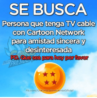 Cartoon Network, Memes, and Cartoon: SE BUSCA  Persona que tenga TV cable  con Cartoon Network  para amistad sincera y  desinteresada  PD Que sea para hoy por favor  PARA  Fb.com/GokuParaPresidenteOficial ¡SE BUSCA!